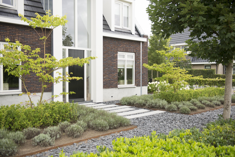 Goedkoop tuin aanleggen epe budget tuin